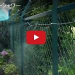 ミストシャワー動画